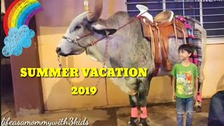 Summer festival in Mexico 2019 || summer vacation || family vlog # 6