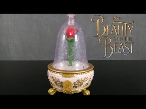 mp4 Beauty Beast Rose Jewellery Box, download Beauty Beast Rose Jewellery Box video klip Beauty Beast Rose Jewellery Box