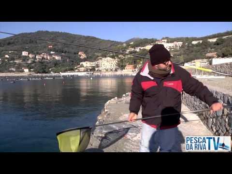 SUV di seconda mano per pesca