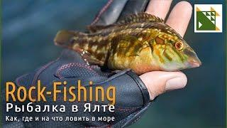В ялте морская рыбалка