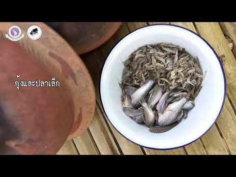 แอ็บปลาใส่กุ้งฝอย