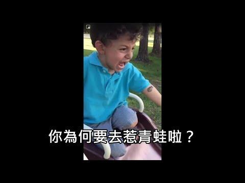 男孩被野生青蛙嚇哭,媽媽出手幫忙卻讓男孩秒崩潰