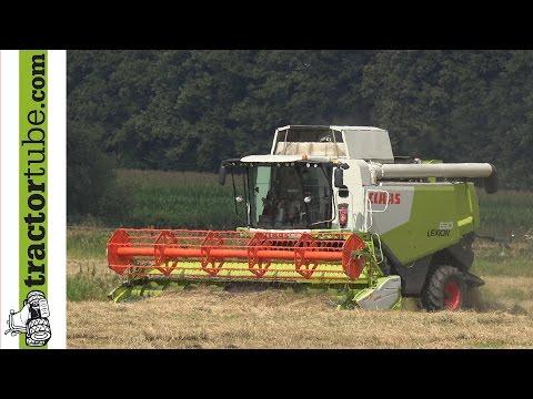 Grassamen dreschen mit Claas Lexion 630 durch Milchviehbetrieb Klaassen, Bocholt