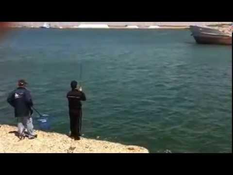 La pesca sullestuario kuchurgansky di video