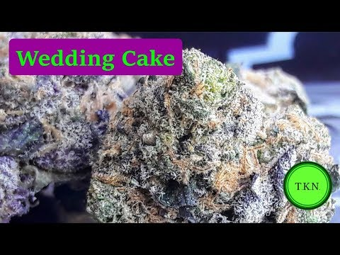 Wedding Cake Weed Strain Review