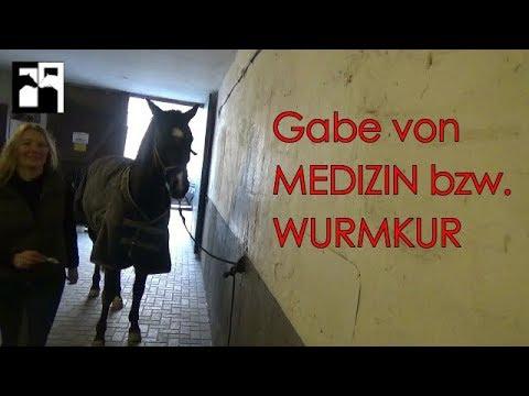 Wurmkur | Medizin verabreichen leicht gemacht | Omas Hausmittel fürs Pferd | CP2