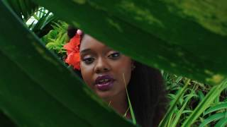 Amindi K. Fro$t, Tessellated & Valleyz - Pine & Ginger (Official Video)