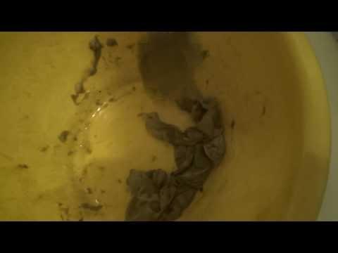 Как убить глинистых паразитов готика