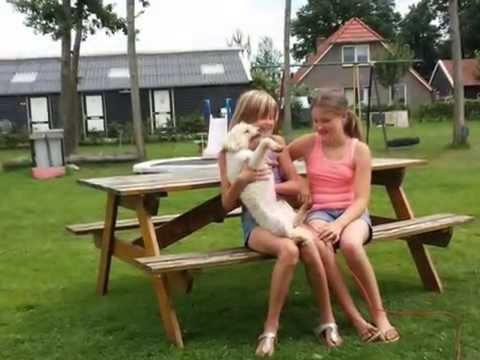 camping De Stadsgaten Hasselt -Rouveen 2014