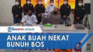 Anak Buah Nekat Bunuh Bos di Bengkulu, Sakit Hati Istri Hampir Bunuh Diri Disetubuhi Dua Kali