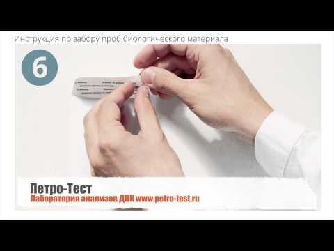 Анализ ДНК тест. Установление отцовства