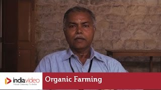 Importance of Organic Farming