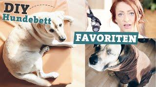 FAVORITEN Hundezubehör | DIY Hundebett selber machen | Bademantel für Hunde