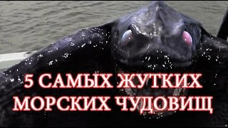 ✅ТОП 5 самых жутких морских чудовищ