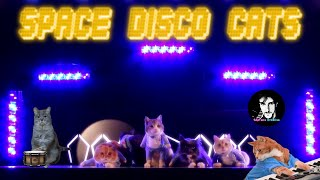 SPACE CATS - MAGIC FLY (Meow Disco Remix 2016)