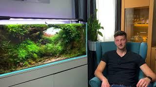 The International Aquatic Plants Layout Contest 2020