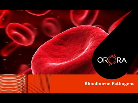 Bloodborne Pathogens Training Presentation