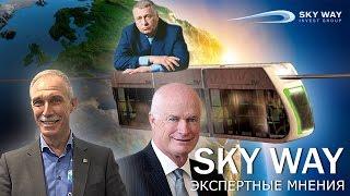SkyWay: Экспертные мнения