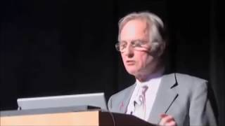 The Flaw of Richard Dawkins' God Scale