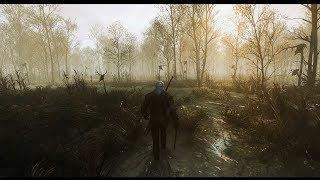 Witcher 3 Extreme modded graphic gameplay  Poppy Redux Reshade  Phoenix Lighting Mod 101