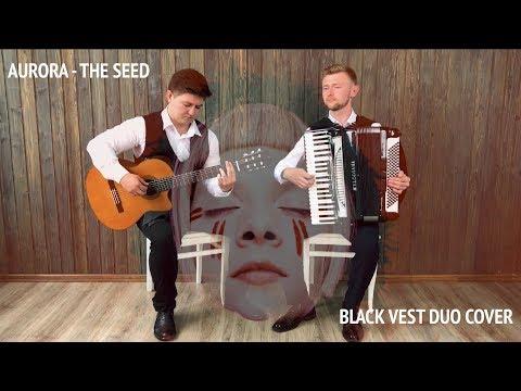 """Инструментальный дуэт """"BlackVest"""" аккордеон+гитара, відео 2"""