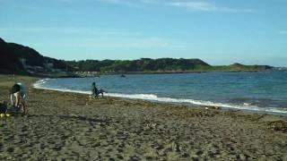 和田長浜海水浴場 海の家 まりんのイメージ
