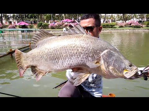 FishingKaki.com – Trip to Pasir Ris Pond