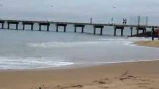 preview picture of video 'WIDY Swimming in the sea off Philip Island'