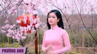 Video hợp âm Lưu Bút Ngày Xanh Phương Anh