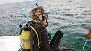 Sea Monsters & Our First Sailboat SCUBA Dive (Sailing Curiosity)