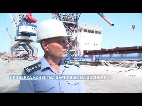 Специалисты Россельхознадзора проверяют качество экспортируемого зерна в Ростовской области