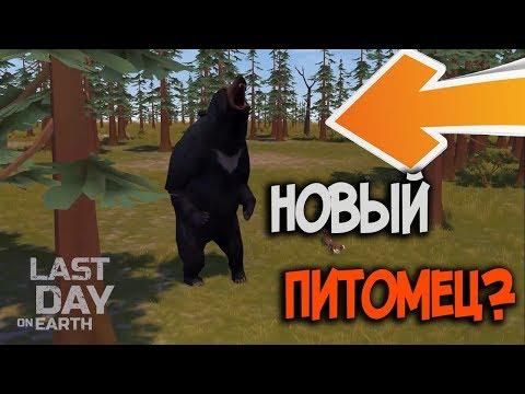 Медведь будет новым питомцем для хардовых локаций ? Last Day on Earth: Survival