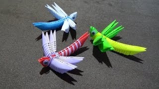 How To Make A 3D Origami Dragonfly
