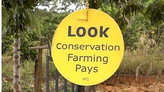 preview picture of video 'CONSERVATION AGRICULTURE FARMING IN KENYA -PAFID'