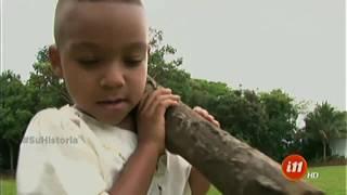 ¿Le gustaría saber cómo se originó el apellido Granados en Costa Rica