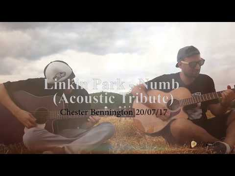 Linkin Park - Numb (Tribute Chester Acoustic)