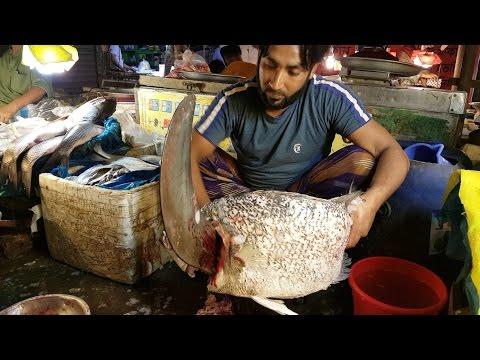 Mga sanhi at paggamot ng Giardia sa mga bata