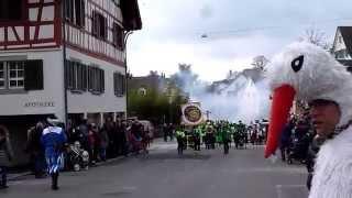 preview picture of video 'Fasnachtsumzug Meilen 2015 - 1 von 4'