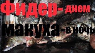 Рыболовные базы астраханской области харабалинский район