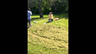 Swarm of 5,000 bees attack man