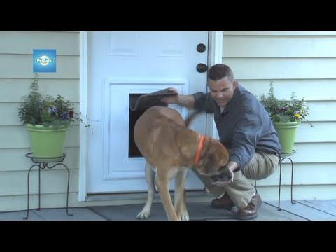 Petsafe - Classic Large Replacement Single Flap Video
