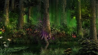 Mystical Forest Music - Enchanting Magical Creatures