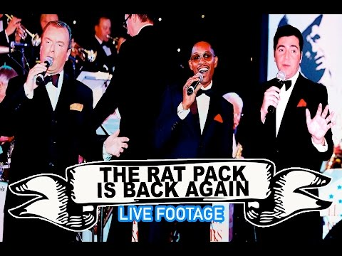 The Rat Pack Is Back Again Video