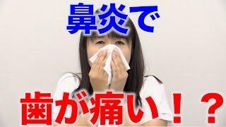 鼻炎が起こす歯の痛み?