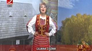 LILIANA COZMA  -  IAR II ZI DE SARBATOARE ( colaj )