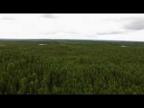 sexälskande kvinnor i ylöjärvi dejta kåt tjej i kouvola