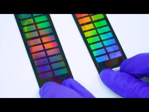 DNA testy a soukromé informace