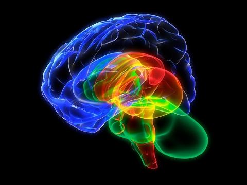 1. Что такое кратковременная память?