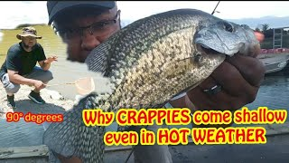 Why CRAPPIES come Shallow in HOT WEATHER🔥 SUMMER CRAPPIE Crappie Town USA Baby