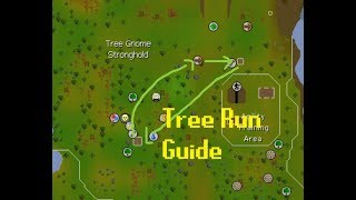 Farming Guide: Tree Run Route [OSRS]